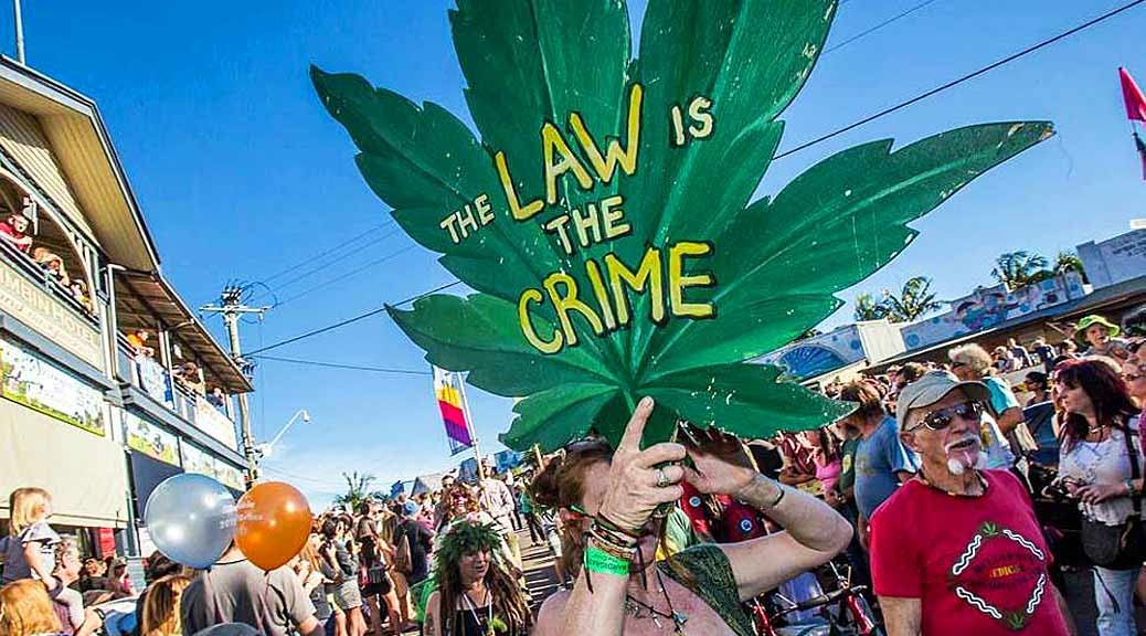 10-ways-to-help-the-legalisation-of-dagga-in-South-Africa